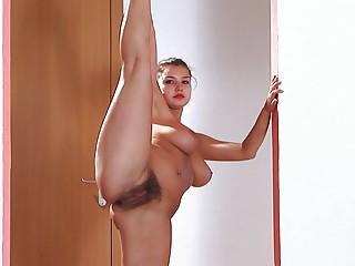 Flexy Clips